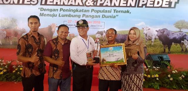 Dirjen PKH I Ketut Diarmita (kaos putih) menyerahkan trofi dan piagam juara 1 kategori calon induk sapi perah kepada Sriawan (tengah) didampingi Sekretaris Dinas Peternakan Jombang Sri Surjati (kanan)