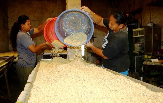 MASIH BERTAHAN: Sentra pembuatan tempe di Desa Tanjungtani, Kecamatan Prambon mulai terdampak melemahnya rupiah terhadap dolar AS. Meski demikian, produsen tidak berani menaikkan harga karena khawatir penjualan akan turun.
