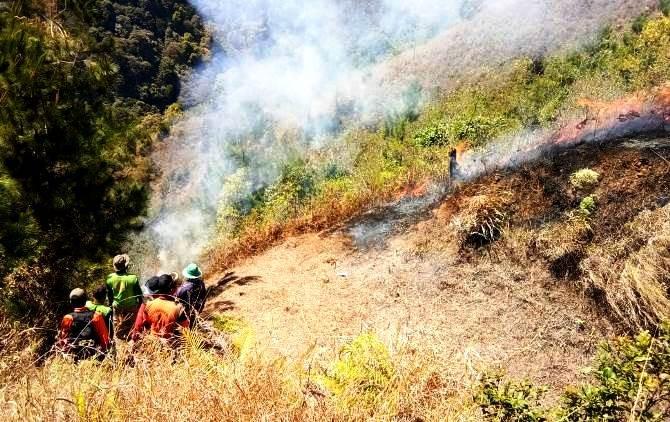 MEDAN TERJAL: Tim gabungan dari perhutani, LMDH dan TNI membuat ilaran dengan membersihkan ilalang agar api tak menjalar ke lokasi yang belum terbakar.
