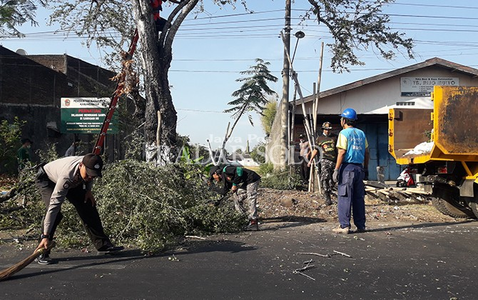 JAGA LINGKUNGAN: Petugas kebersihan dibantu anggota Polri membersihkan sampah sisa penebangan pohon, Selasa (11/9).