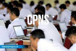 Hanya 200 Peserta CPNS yang Lolos Passing Grade