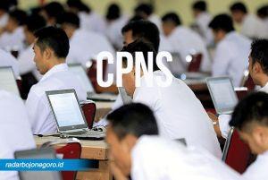 Formasi CPNS Yang Terisi Di Jateng Kurang Dari 20 Persen