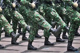 Ormas Pakai Atribut TNI Meresahkan, Denpom Beri Warning