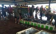Tangkapan Melimpah, Harga Ikan Nelayan Jembrana Anjlok