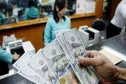 Dolar Naik, Retribusi IMTA Melonjak Jadi Rp 1,96 Miliar