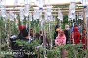 Ayo, Update Status di Kampung Bunga Banyuwangi