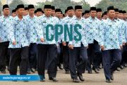 Agar Lolos, CPNS Harus Bisa Lampui Passing Grade