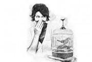 Sihir Burung Kirmin