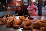 Duh, Mahalnya Harga Daging Ayam, Picu Inflasi