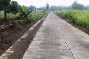 Camat Bandar Kedungmulyo Mengaku Belum Tahu Jalan Cor PISEW Rusak