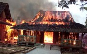 Lupa Matikan Kompor, Lima Rumah Ludes Terbakar