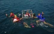 Merasakan Bangsring Underwater, Eksotisme Bawah Laut Selat Bali