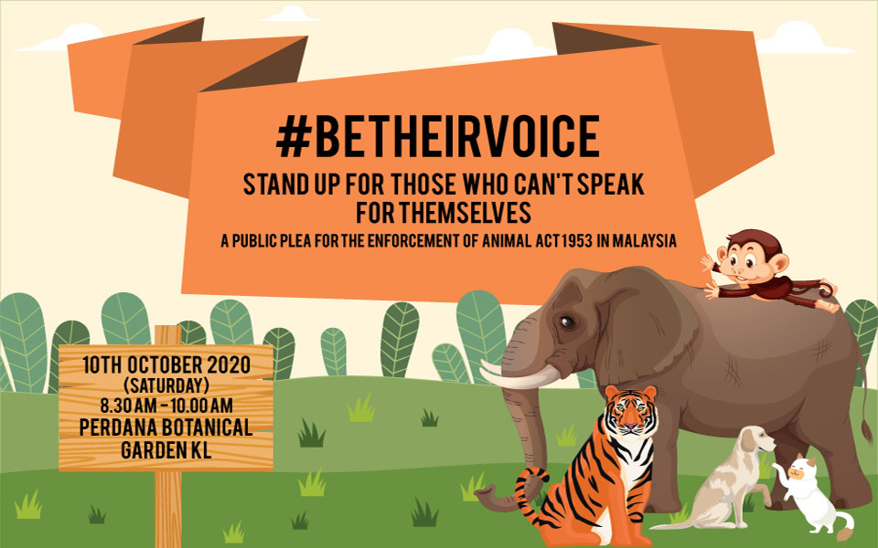 #BeTheirVoice x World Animals Day 2020