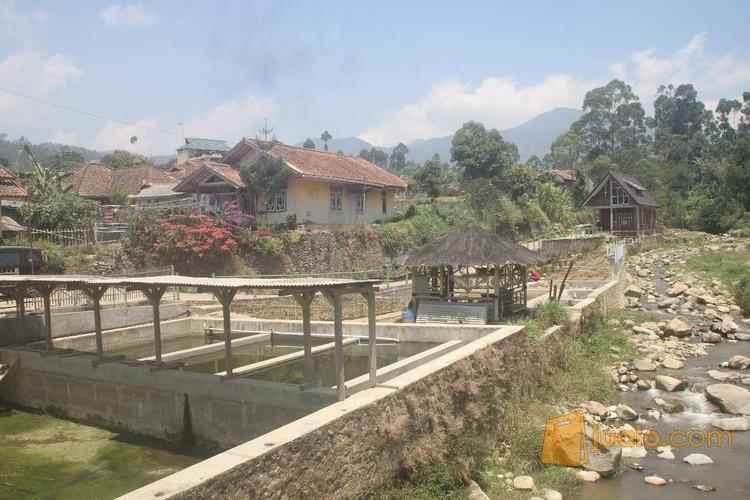 villa murah ciwidey