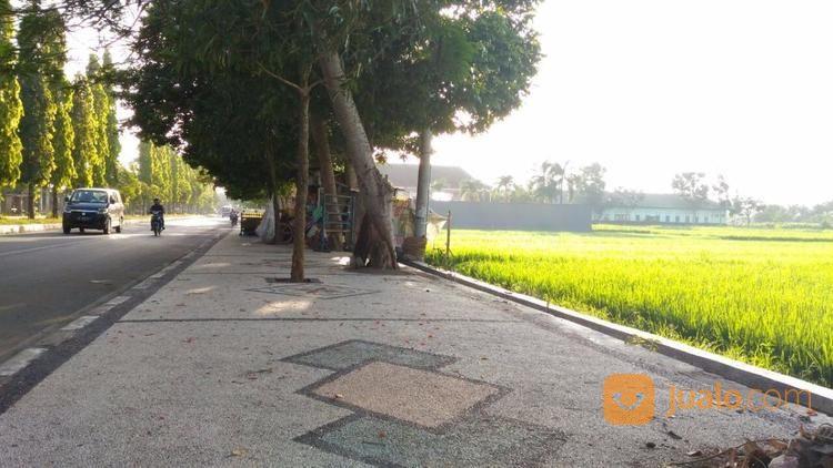 tanah strategis di jalan lingkar selatan kota mataram