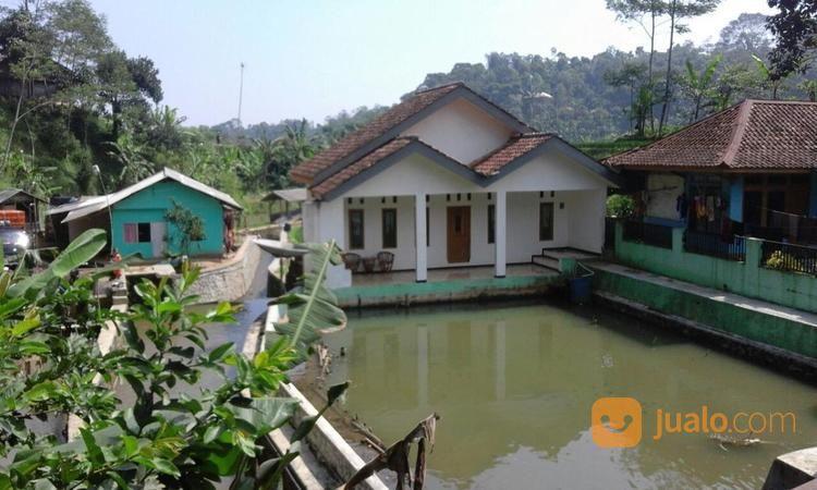 murah villa dan kolam ikan 1000 m2 di cikalong bandung barat