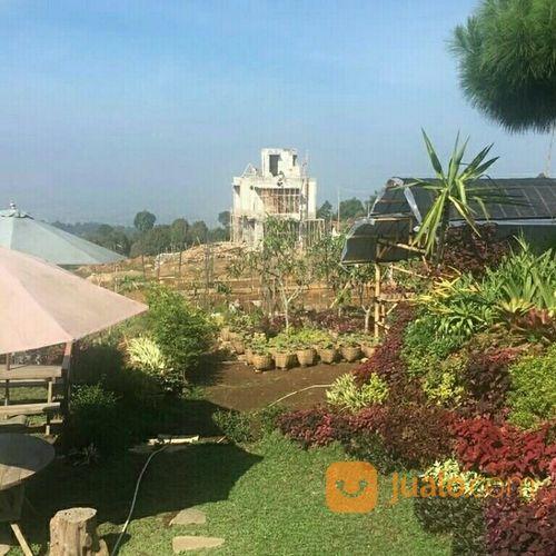 villa modern yg menyatu dg alam taman buah & taman sayuran