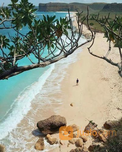 tanah pinggir pantai luas 130 ha di pantai kura - kura lombok