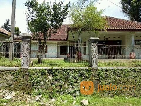 rumah villa murah pinggir jalan 750 m2 serangpanjang subang