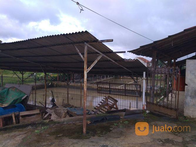 kolam pemancingan di cimahi. prospek sangat bagus untuk investasi usaha