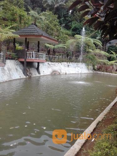 rumah villa mewah dan kolam ikan luas 1,5 ha bojong purwakarta