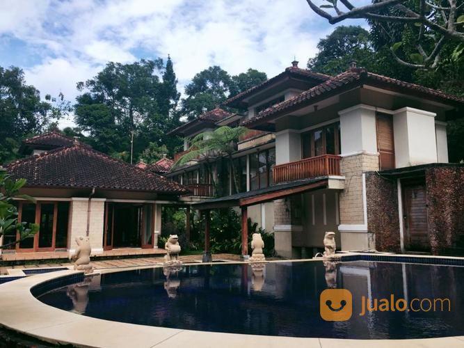 villa dgn kolam renang dan halama luas di cisarua puncak bogor