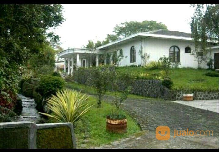 villa di kawasan wisata puncak, tanah besar 4.5 ha