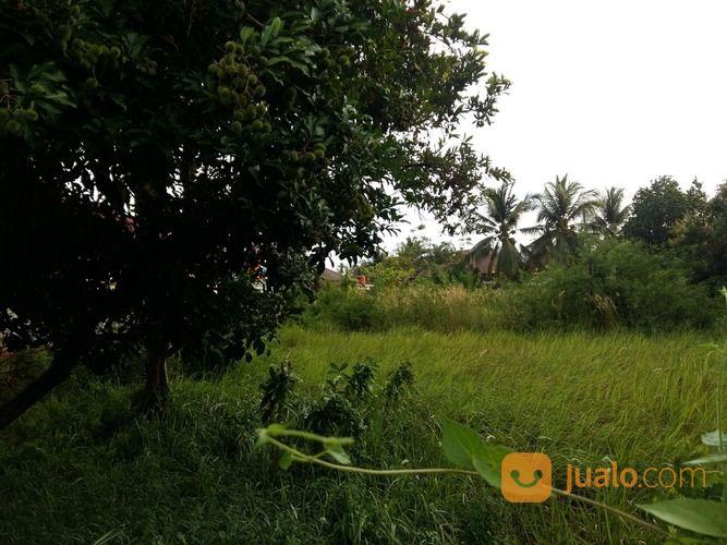 tanah datar di pinggir jalan raya dekat tempat usaha