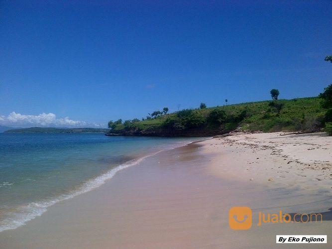 tanah 21 hektar pantai pink telone lombok timur - ntb