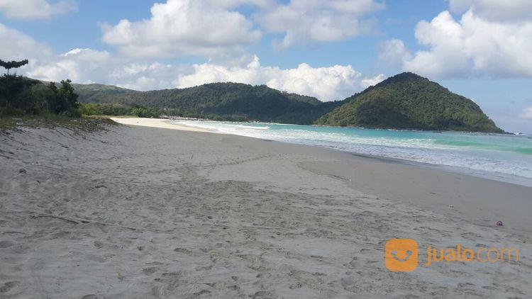 tanah tepi pantai selong belanak lombok