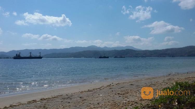 tanah pinggir pantai di desa medang sekotong
