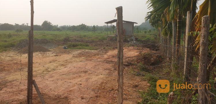 tanah prospektif perumahan
