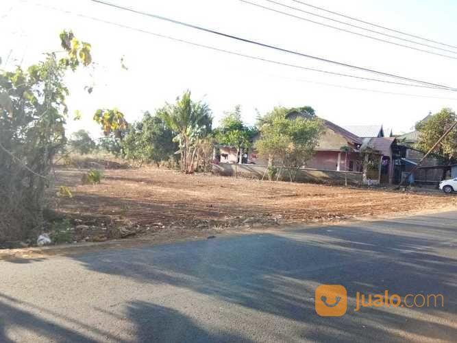 0852 4288 5842 tanah kavling bebas banjir dekat makassar, tanah pinggir jalan poros dekat makassar