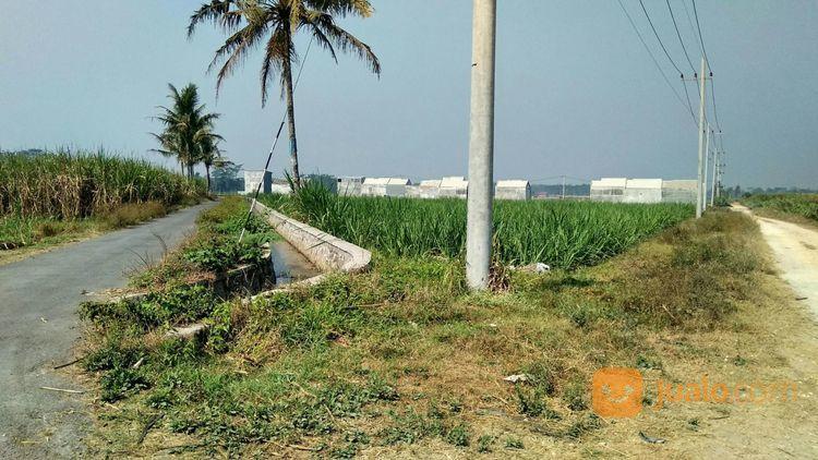 murah tanah ramai perkampungan, tanah kavling wagir malang, malang kab, jawa timur