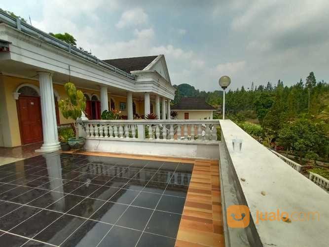 villa fully furnish bagus, asri, nyaman di puncak ciaw ega mendung bogor