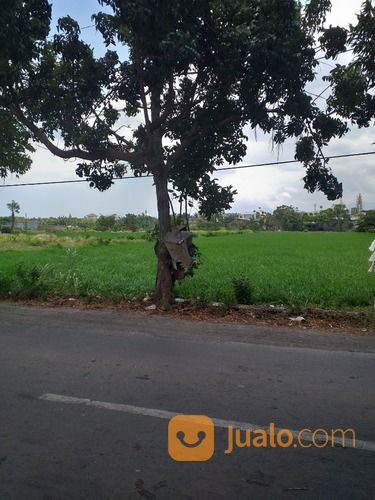 tanah di pinggir jalan raya dekat kampus nw