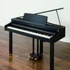 Digital Grand Piano Roland RG-1 SB