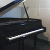 Jual piano grand merk Gebr Niendorf,warna hitam mengkilap,body mulus,tinggal pakai,suara tinggi bagus &amp di garansi.harga 45jt.jika anda ingin melihat bisa l
