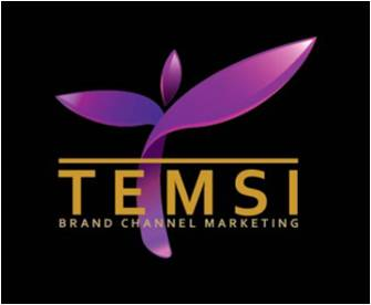 TEMSI Brand Channel Marketing
