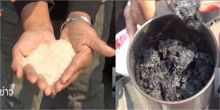 Fake Rice Made Up of Plastic4