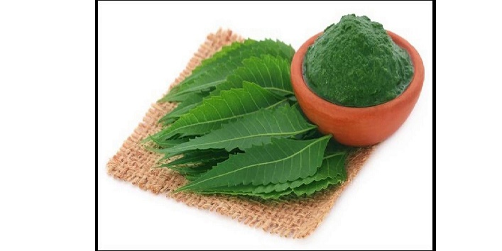 Neem paste for preventing bacterial infections