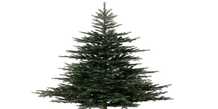 Easy-Tips-to-Clean-Artificial-Christmas-Tree-4