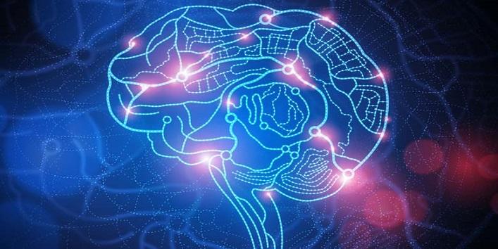 Improves cognitive powder