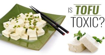 Why Tofu Is Harmful to Your Health