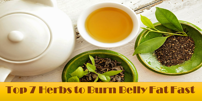 Best Herbs To Burn Belly Fat Faster Khoobsurati