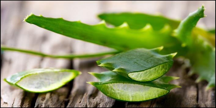 Aloe vera scrub