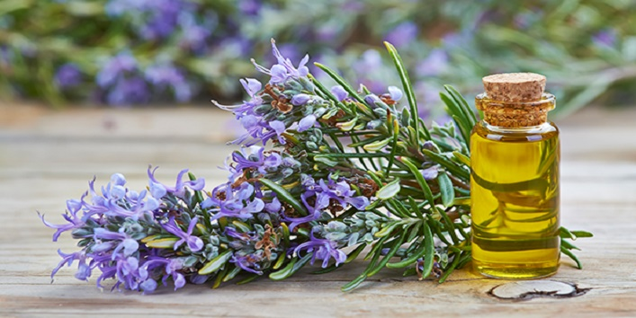 Rosemary essential oil for youthful skin