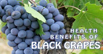 Health Benefits of Black Grapes