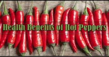 Health Benefits of Hot Peppers
