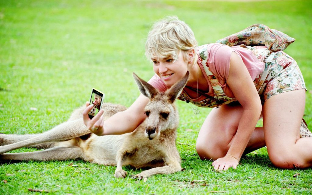 Kangaroo Island Kesari Tours | best travel sites